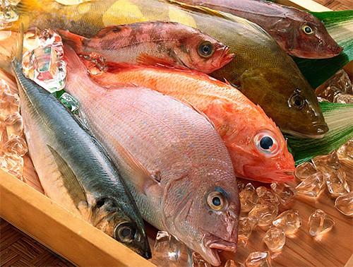 Рыбная диета способна вылечить ряд болезней