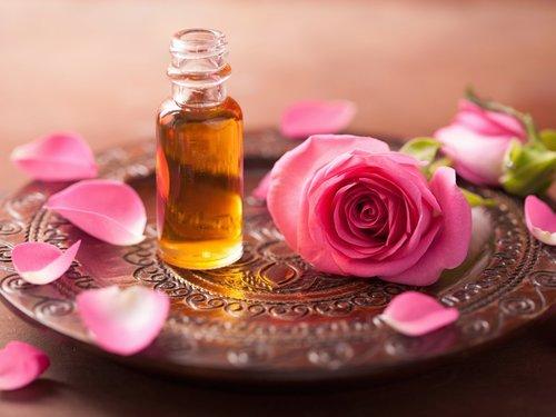роза, запах