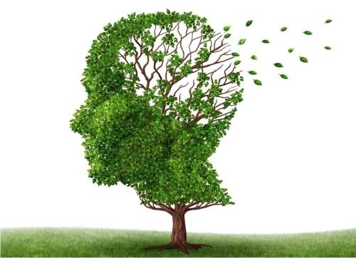 слабоумие, болезнь Альцгеймера