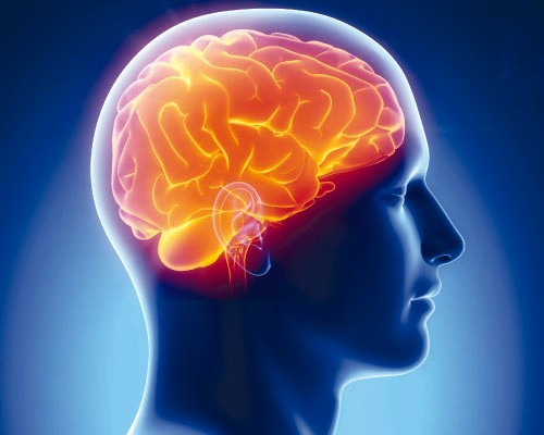 мозг, опухоль