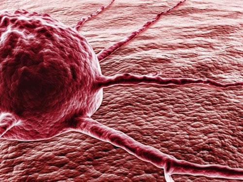 рак, мутация, лечение