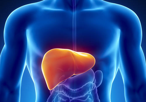 На развитие рака печени могут указывать 3 неочевидные признака