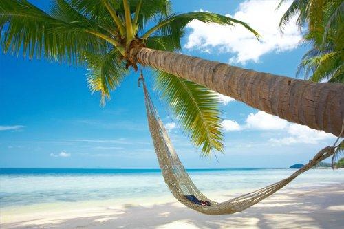 отпуск, отдых
